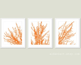Modern Spring Tree Branches Art Prints - Set of Tree - Tangerine Orange Woodland Home Decor - Multi Panel Tree Triptych Wall Art