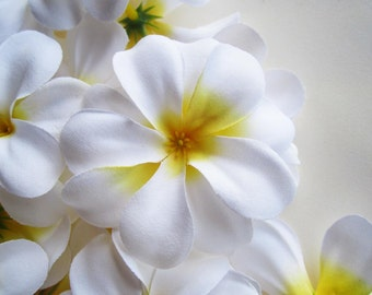 12 White Plumeria Frangipani Heads - Artificial Silk Flower - 3 inches - Wholesale Lot - for Wedding Work, Make Hair clips, headbands, hats