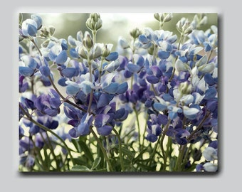 Floral wall decor shabby chic wall art canvas wrap, blubonnet Texas flowers artwork oversized, country cottage decor, sage green purple blue