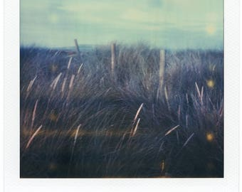 Malahide Beach, Ireland, Nautical, SX70, Polaroid Photography, Vintage, Home, Office, Decor, Original, Landscape, Grass in the wind, Poetic
