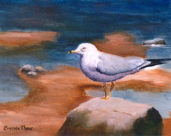 Seagull Original 8x10 Oil Painting