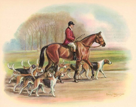 Hunting Horse With Rider Foxhounds Color Print by Edwin