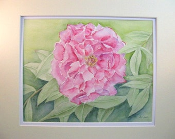 Pink peony flower original watercolor painting matted signed