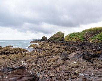 Coastal Wall Art, Scotland Photography, Ocean Print, Scotland Print, Stormy Sky, Fishing Village, Scottish Coast, St. Abbs, Mossy Rocks