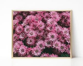 Pink Flowers Print. Flower Photography. Garden Home Decor. Floral Wall Art. Nature Photo. Summer Blooms.
