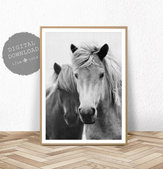 Horse Wall Art Print, Photography Black and White, Digital Download, Printable Horse Art, Black and White Horse Photo, Large Wall Art Print