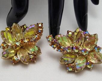 Exotic Glass Stone Earrings