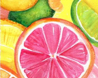 Citrus Watercolor Painting Ruby Red Grapefruit, Lemon, Orange, Limes original, Watercolor Painting, Fruit ART 5 x 7 kitchen decor