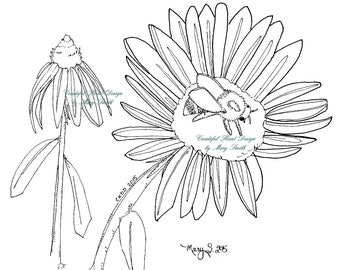 Flower And Bee, Coneflower, Daisy, Digital Stamp