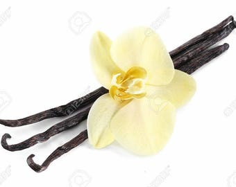 Top Seller VANILLA Scented Incense Sticks, Elevates Your  Mood, Hand Dipped Bundles of 20