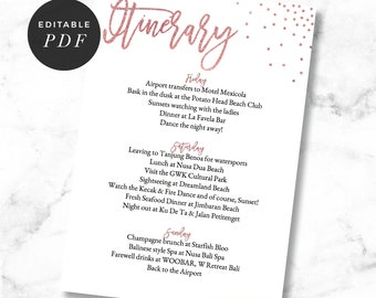 Itinerary Card, Itinerary Template, Rose Gold, Editable, Hens Night, Hens Weekend, Bachelorette Party, Bridal Shower, Printable