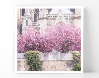 Paris Photography - Cherry Blossoms on the Seine, 5x5 Paris Fine Art Photograph, French Home Decor, Wall Art, Gallery Wall
