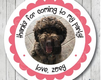 Custom Personalized Photo Stickers, Pet Photo Labels, Dog Photo Favor Tags, Custom Photo Stickers