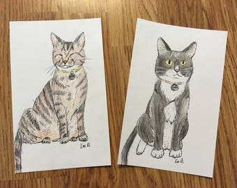 CUSTOM Pen and Colored Pencil Pet Drawing