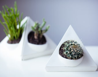 Succulent | Airplant | Planter Pot | Drip Tray and Drain Hole