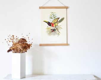 Bird Board on the from John Gould TOUCANS - chopsticks made of solid oak frame