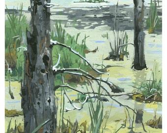 Highland Oaks pond