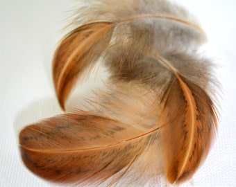 Feather 3-4 inches Saddle appx. 55 Brown Black Splash Gold