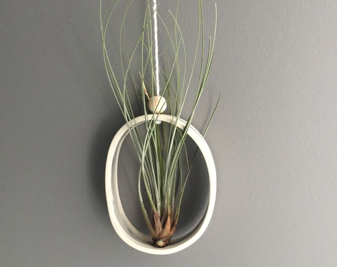 Medium Oval or Round Airplant Cradle Sling Hanging Planter #FREESHIPPING