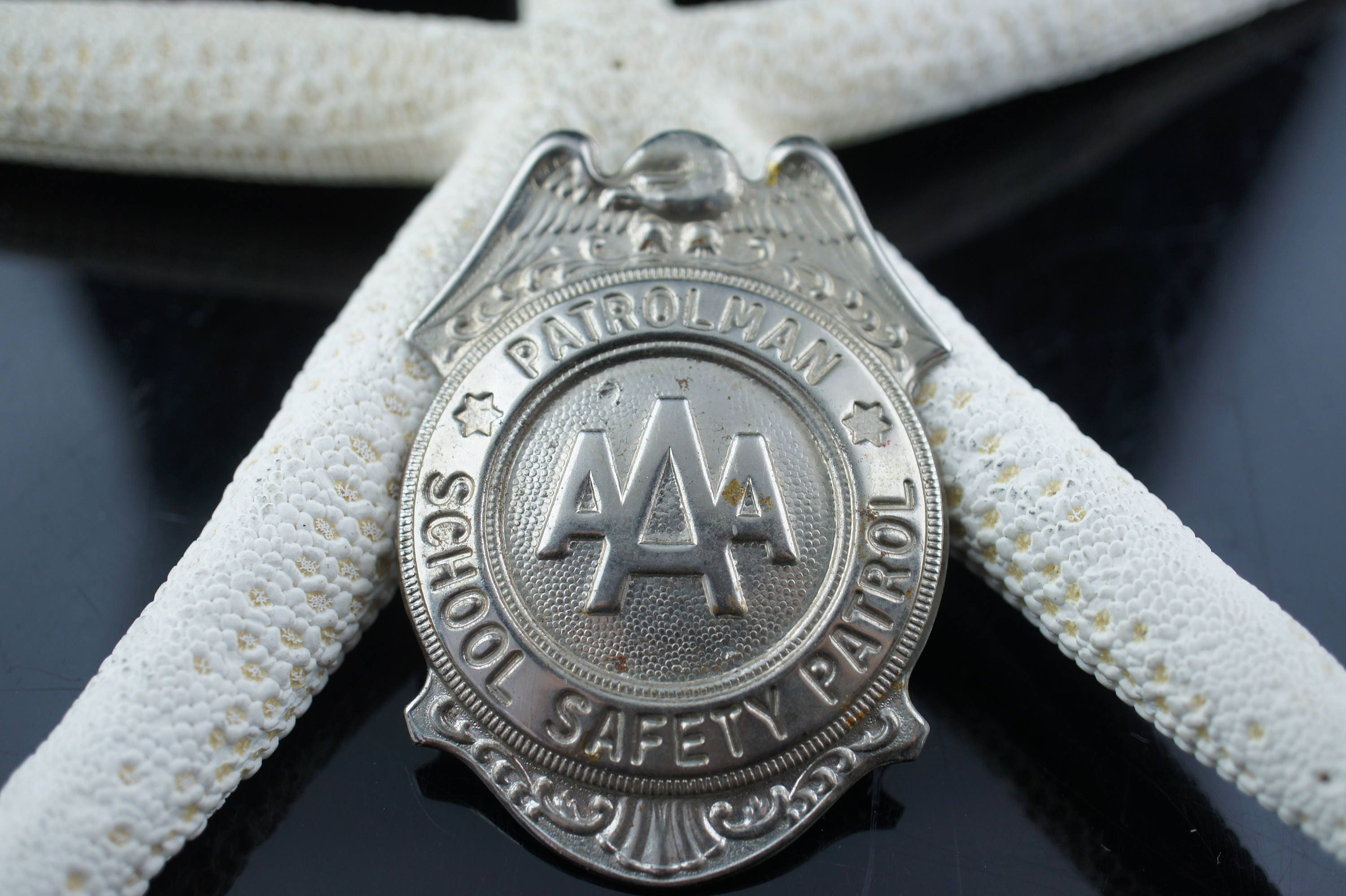 arlington county victoria interceptor department wiki acpd medallion police crown ford wikipedia