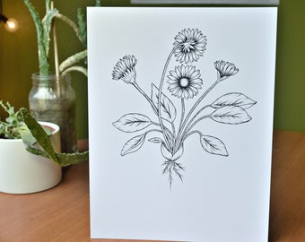 Botanical Flower Black Print Illustration