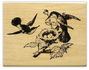 HUMMINGBIRDS NESTING mounted bird rubber stamp, Spring, nest, humming bird, Sweet Grass Stamps No.9