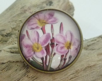 Pink Frangipani Ring (Antique Bronze) Glass Dome Cabochon, Flowers, Australian Made Jewellery / Jewelry
