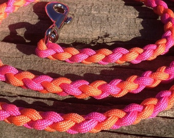 Paracord Round Braid 4 Foot Dog Leash