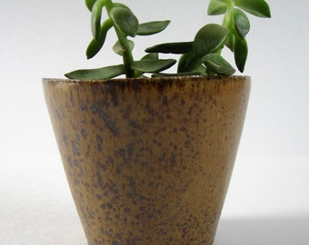 Medium Tall Honey Speckled Stoneware Planter