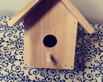 Bird house kit etsy build it yourself complete bird house kit ages 5 solutioingenieria Gallery