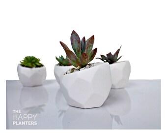 Geometric, Ceramic Planter, Succulent planter, Air plant holder, geometric terrarium, gift for men, farmhouse decor, gifts for men, gift