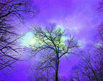 Statement in Violet 8x10 Fine Art Abstract Gothic Photography Purple Wall Art Print