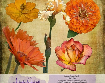 Orange and Peach Flower Set 2 (Extracted)