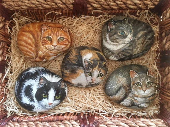 Image result for rocks painted like cats
