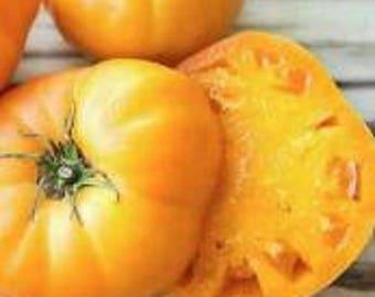 Goldie Tomato Heirloom Garden Seed Non-GMO 30+ Seeds Naturally Grown Open Pollinated Gardening