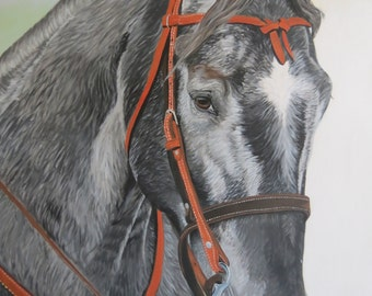 Horse Portrait Art Panel Original Hand Painted on Wood Panel 3 ft x 3 ft by Shannon Ivins