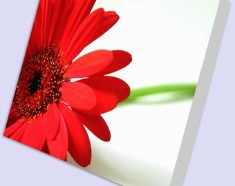 Canvas print - Your image printed onto canvas,  Printing onto canvas, Wall Art, Wall decor