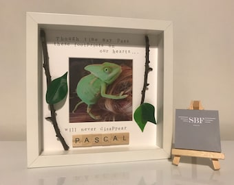 Scrabble, Pet, Personalised Gift Frame