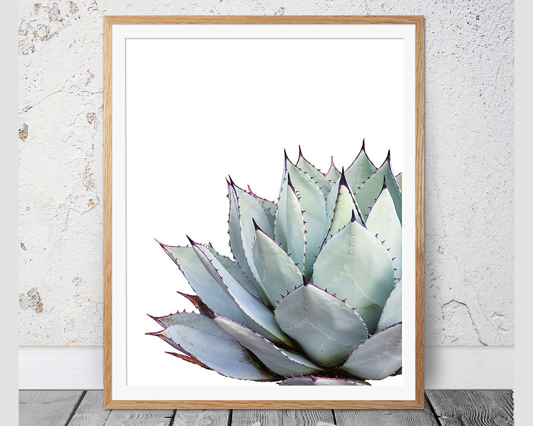 Insane image within cactus printable
