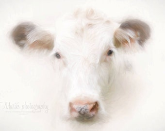 "Buttercup the cow  Canvas 24x36"" PREORDER"