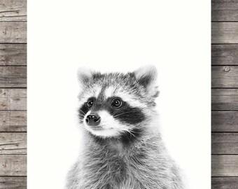 raccoon print, baby shower gift, home decor, kids room decor, nursery decor, printable art, wall decor, woodland creatures, raccoon