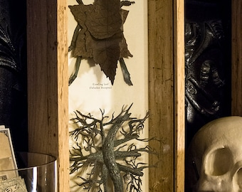 The Camouflaged - Insect Shadow Box - Screen Printed Sculptures