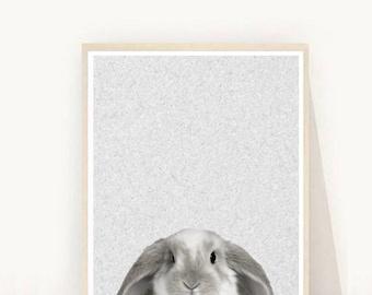 Bunny Print, Rabbit Print,  Bunny Nursery Art,  Printable Art,  Wall Art,  Digital Download, Wall Decor,  Animal Print, Nursery Art