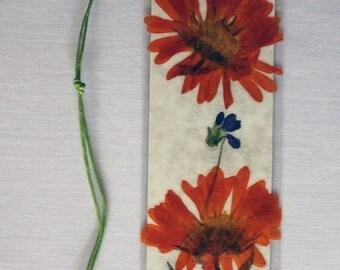 Bright orange daisy pressed flower bookmark