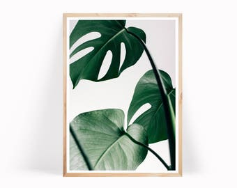 Monstera Leaves Botanical Print, Monstera Leaf Art, Tropical Leaf Wall Art, Botanical Poster Monstera Art Print, Large Leaf Poster, Wall Art