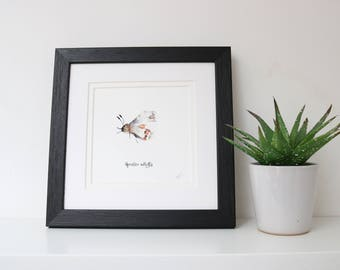Apollo Butterfly Framed Square Print