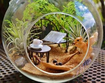 """Squirrel on a leaf Terrarium Kit ~ 7"""" Air Plant Terrarium Kit ~ Miniature Garden Kits ~ Fairy Garden Kits ~ Sand Choice ~ Gift ~ Christmas"""