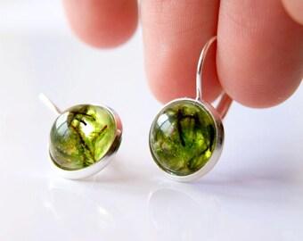 Moss Terrarium Botanical Green Moss Earrings Nature Earrings Resin Earrings Real Plant Eco Resin Earrings Terrarium Earrings Green Earrings