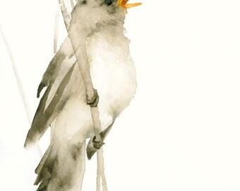 Bird Art Print Little Brown Songbird