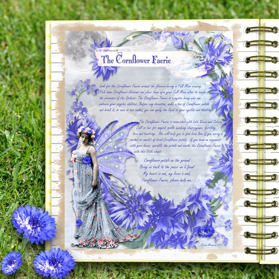 The Cornflower Faerie